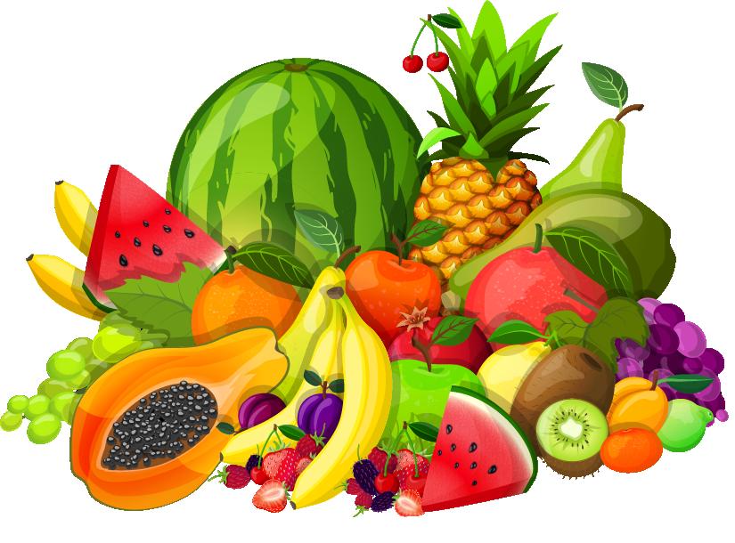 fruits contact